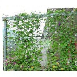 Plasa pentru castraveti 1.5 x 10 m