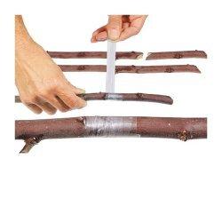 Banda pentru altoit copaci