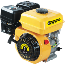 Motor uz general, benzina, 15CP, model GP-190F (PMP0026)