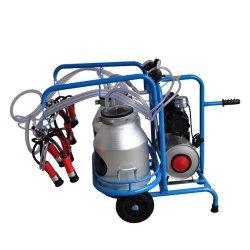 Mașină de muls cu 2 posturi | 2 rezervoare | Vacuum Tank